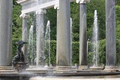 Lejonkaskaden skilja sig åt från andra springbrunnar i Peterhof, Ryssland royaltyfri bild