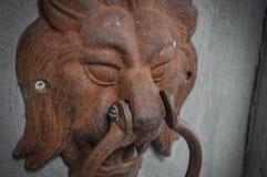 Lejonmun på dörren royaltyfri foto