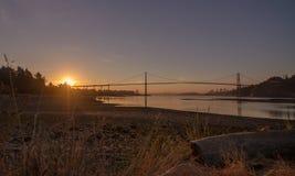 Lejonportbro på soluppgång Arkivbilder