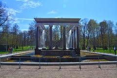 Lejons kaskad i Peterhof, St Petersburg, Ryssland Arkivbild