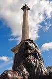 Lejonskulptur och Nelson kolonn på den Trafalgar fyrkanten, London, UK royaltyfri foto