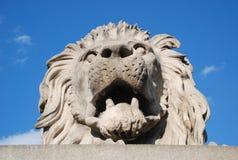Lejonstaty i Budapest Arkivbild