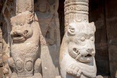 Lejonstatyer och pelare i den forntida hinduiska templet av Pallavasen, Kanchipuram Indien Arkivbilder