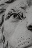 Lejonstatyslut upp Royaltyfria Foton