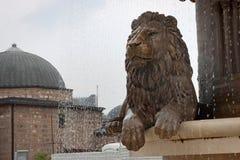 Lejonstatyspringbrunn i Skopje, huvudstad av Makedonien Arkivbilder