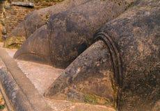 lejonstenen tafsar dekorerar porten till den Sigiriya fästningen som lokaliseras Arkivfoto
