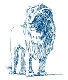 Lejonteckning stock illustrationer