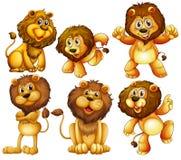 Lejonuppsättning royaltyfri illustrationer