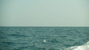 Lejos en los barcos y las naves de navegación del mar en el horizonte 4K almacen de metraje de vídeo