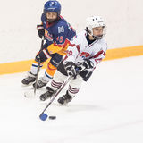 Lekögonblick mellan barnishockeylag Royaltyfria Foton