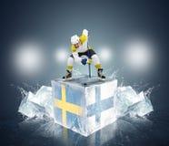 Lek av modiga Sverige vs Finland Royaltyfria Foton