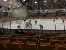 Lek för Danville dashershockey Arkivfoto