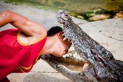 Lek med krokodilen Royaltyfri Foto