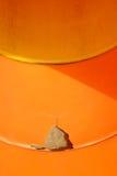 Lek som ska hållas ögonen på ut för skadade barn Royaltyfri Foto
