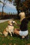 leka för bollhund Royaltyfria Bilder