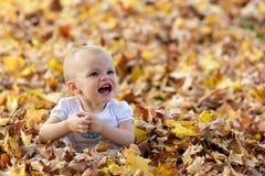 leka för fallspädbarnleaves Arkivfoto