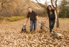 leka för familj royaltyfri bild