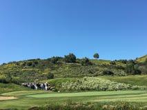 leka för golfgrabb Royaltyfri Foto