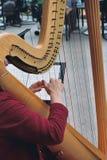 leka för harpa Arkivfoto