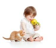 leka för kattunge för äpplebarn roligt Arkivbild