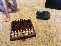 leka för schack royaltyfri fotografi
