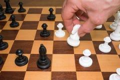 leka för schack Flytta sig vid riddaren arkivfoto