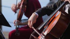 leka för violoncellman stock video
