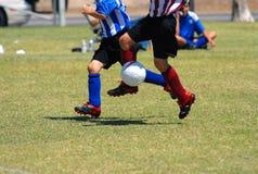 leka fotboll royaltyfri fotografi