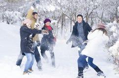 Leka i Snow royaltyfria bilder