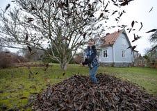 Leka med leaves Arkivfoton
