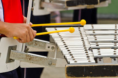 leka xylofon Arkivbild