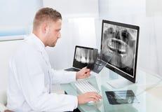 Lekarka lub radiolog patrzeje promieniowanie rentgenowskie online Zdjęcia Stock