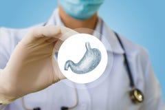 Lekarka pokazuje ikonę z ludzkim żołądkiem Zdjęcie Royalty Free