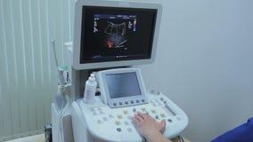 Lekarka pracuje przy ultradźwięk egzaminacyjną jednostką, barwionymi naczyniami krwionośnymi i arteriami, na monitorze zbiory wideo