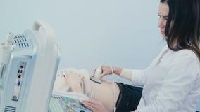 Lekarka prowadzi ultradźwięk podbrzusze zbiory