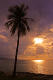 Lekarki jamy plaża, Montego Bay, Jamajka zdjęcia royalty free