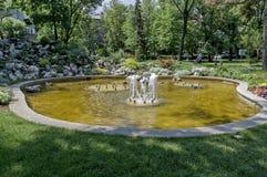 Lekarki Ogrodowa mała fontanna Zdjęcie Royalty Free