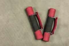 Lekcy dumbbells dla sprawności fizycznej Fotografia Royalty Free