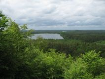Leke. Overgrown shore of a small lake stock photos
