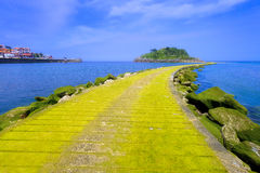 Lekeitio village with San Nicolas island and pier with moss Stock Photography