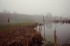 Lekka mgła Zdjęcie Stock