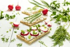 Lekki jarski lunch surowi warzywa z serem, ziele i rzodkwią na białym tle chałupy, Zdrowy styl życia, zdrowy fotografia stock