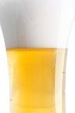 Lekki lager piwa zakończenie up Zdjęcie Royalty Free