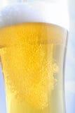 Lekki lager piwa zakończenie up Obrazy Stock