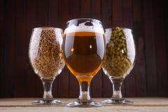 Lekki piwo i składniki Zdjęcia Royalty Free