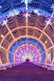 Lekki tunel na Tverskoy bulwarze Moskwa sezony Nowego Roku ` s sceneria Zima fotografia stock