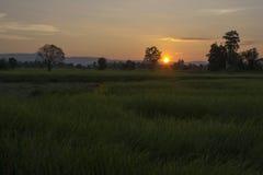 lekki wschód słońca Obraz Royalty Free