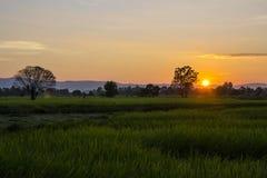 lekki wschód słońca Fotografia Royalty Free