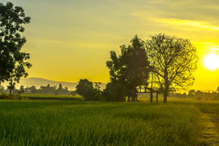 lekki wschód słońca zdjęcia stock