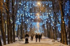 Lekkie iluminacje na drzewach obraz stock
